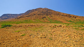 Volcanic Landscape in the Wilderness stock photography