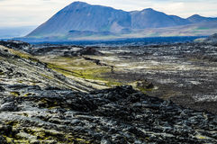 Volcanic lava field in Iceland. Landscape of a volcanic lava field in Iceland Royalty Free Stock Photos
