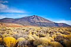 Volcanic lava landscape on Teide, Tenerife,  Spain. Stock Photography