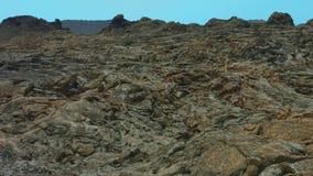 Volcanic lava, Lanzarote stock video