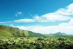 Volcanic mossy landscape Stock Photos