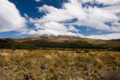 Volcanic mountain with summit covered by snow. Active volcano Ruapehu in Tangoriro National Park, New Zealand stock image
