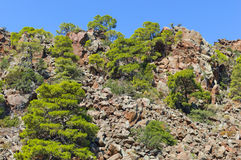 Volcanic mountain Stock Photography