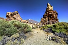Volcanic Mountains of Tenerife. Rocky volcanic mountains with endemic vegetation on the island of Tenerife, the Canary islands stock image