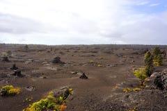 Volcanic Park, Big Island, Hawaii Royalty Free Stock Photos