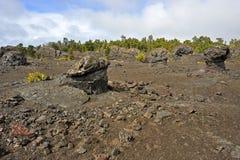 Volcanic Park, Big Island, Hawaii Royalty Free Stock Photo