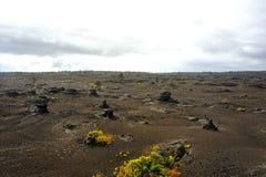 Volcanic Park, Big Island, Hawaii Stock Images