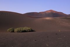 Volcanic park Timanfaya Royalty Free Stock Photo
