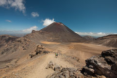 Volcanic  plateau. Northern circuit Great Walk Royalty Free Stock Photography