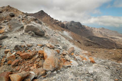 Volcanic  plateau. Northern circuit Great Walk Royalty Free Stock Images