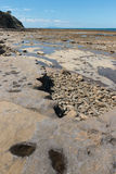 Volcanic plates at low tide Royalty Free Stock Photography