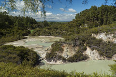 Volcanic pool. New Zealand Royalty Free Stock Photo