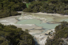 Volcanic pool. New Zealand Stock Photography