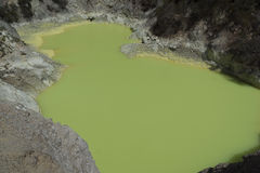 Volcanic pool. New Zealand Stock Images
