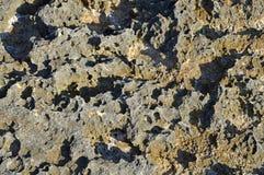 Volcanic Rock Stone Stoney Background Stock Image