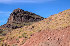 Volcanic Rock Basaltic Formation in Gran Canaria Royalty Free Stock Photo