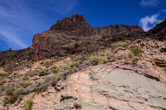 Volcanic Rock Basaltic Formation in Gran Canaria Stock Image