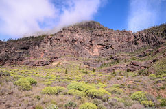 Volcanic Rock Basaltic Formation in Gran Canaria Royalty Free Stock Images