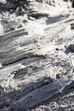 Volcanic rock. In Deschutes National Forest, Oregon Stock Image