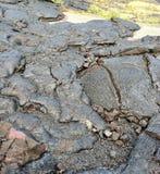volcanic rock Hawaii Stock Photography