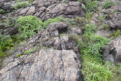 Volcanic rock Royalty Free Stock Photography