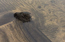 Volcanic Rock and Sand Patterns with Water Stock Photos