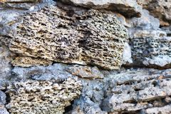 Volcanic rock. Stone texture closeup with white and brown tint. Selective focus royalty free stock photo