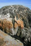 Volcanic Rock in Vancouver Royalty Free Stock Photography