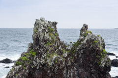 Volcanic rocks  at a coast of Jeju Island. Royalty Free Stock Images