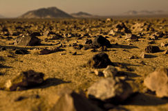 Volcanic rocks on the desert Stock Photography