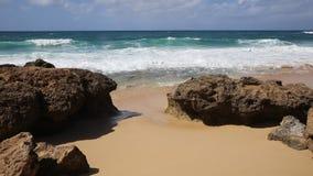 Volcanic rocks on Keaau Beach stock video footage