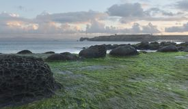 Volcanic rocks of Tarifa Royalty Free Stock Images