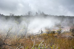 Volcanic steam vents Stock Images