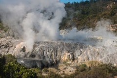 Volcanic valley in Rotorua Stock Images