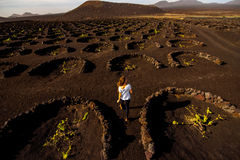 Volcanic vineyard with woman running Stock Photo