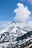 Volcano. Snow and vegetation beside foots of the volcano on Kamchatka Royalty Free Stock Photography
