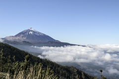 Volcano Above die Wolken Lizenzfreie Stockfotos