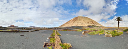 Volcano-agricultural landscape of the Lanzarote. Typical volcano-agricultural landscape of Lanzarote, Canary Islands. Black volcanic soil, malvasia vines, Date royalty free stock photo