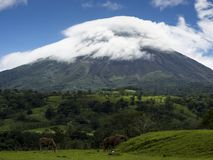 Volcano Arenal, summit in front of blue sky with white clouds, horses on a green pasture stock photos