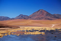 Volcano Cerro Colorado near Rio Putana in Atacama Stock Images
