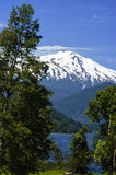Volcano Choshuenco Stock Images