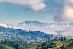 Volcano and coffee plantations. Early morning blue light hits a Coffee plantation near Manizales in the Coffee Triangle of Colombia with the Nevado del Ruiz royalty free stock photos