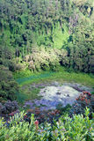 Volcano crater in Mauritius Royalty Free Stock Photography