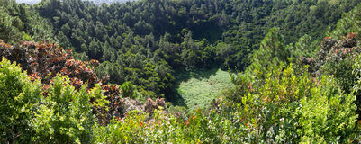 Volcano crater Trou aux Cerfs- panorama.Mauritius Stock Photography