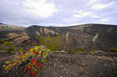Volcano de Teneguia. Canary, Spain Royalty Free Stock Images