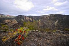 Volcano de Teneguia. Canary, Spain Royalty Free Stock Images