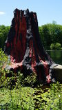 Volcano at The Dinosaur Place at Nature`s Art Village in Montville, Connecticut Stock Photo