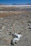 Volcano El Misti Royalty Free Stock Image
