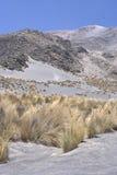 Volcano El Misti Peru Stock Image