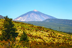 Volcano El Teide in Tenerife, Canary Islands, Spain Stock Photography